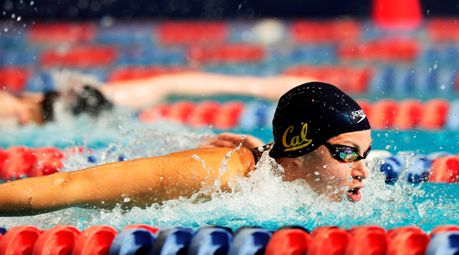 NCAA+Womens+Swimming+_admi