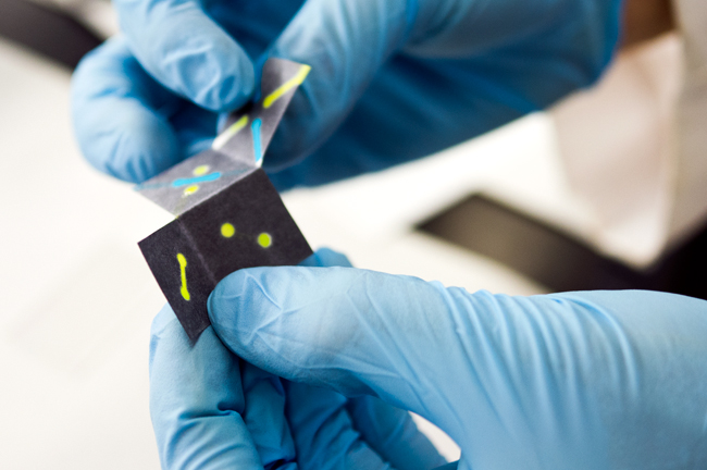 <p>Chemistry professor Richard Crooks and graduate student Hong Liu developed the origami Paper Analytical Device (oPAD) that can identify biomarkers which signal the presence of specific diseases. Photo courtesy of Alex Wang</p>