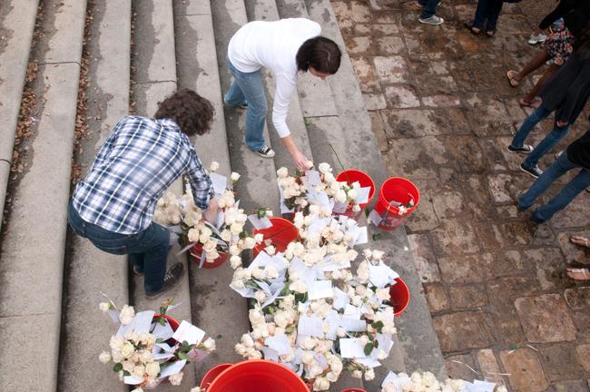 WHITE_ROSE_2012-03-30_White_Roses_Given_Sa_Wang6761