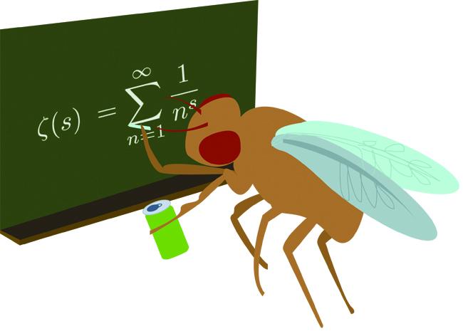 1206_RaquelBreternitz_science