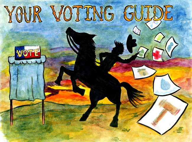 texas voting guide