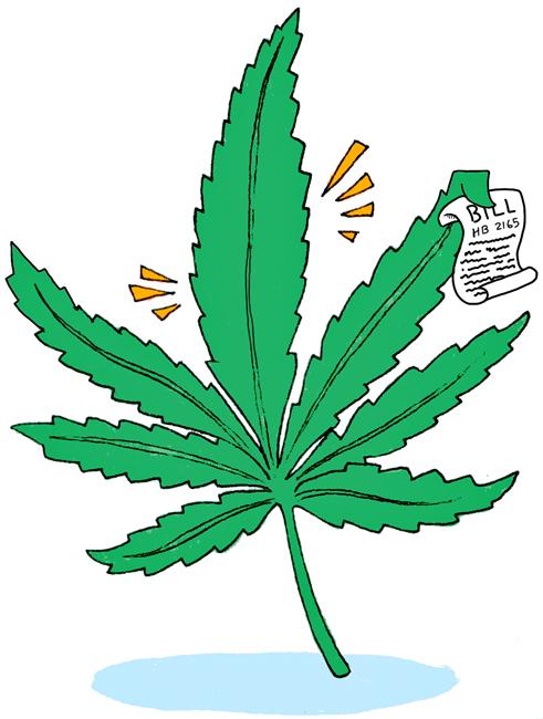 marijuana_0304_MelanieWestfall261
