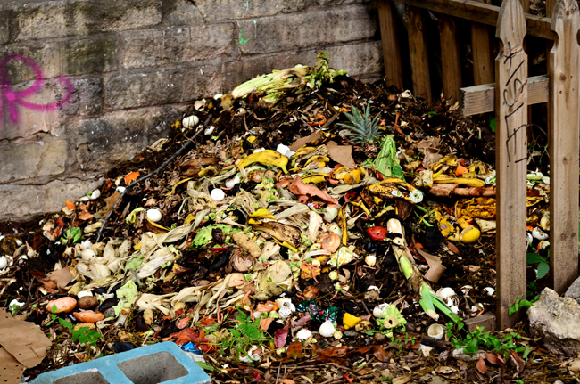 2015-05-08_Compost_Andy