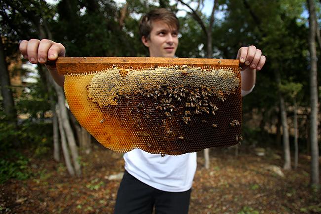 2015-11_01_UT_Beekeeping_Society_Rachel