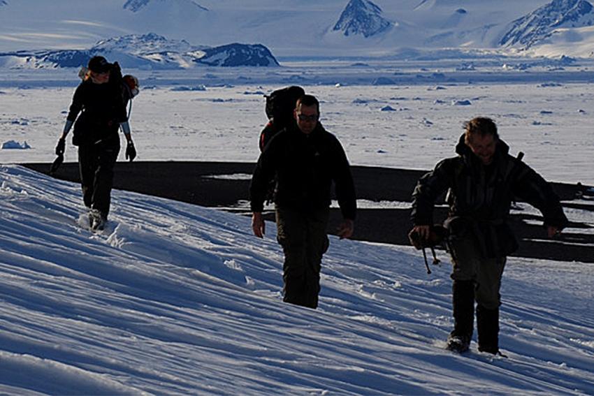 Antarctica_Dinos