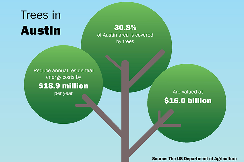 ONLINEtree+infographic