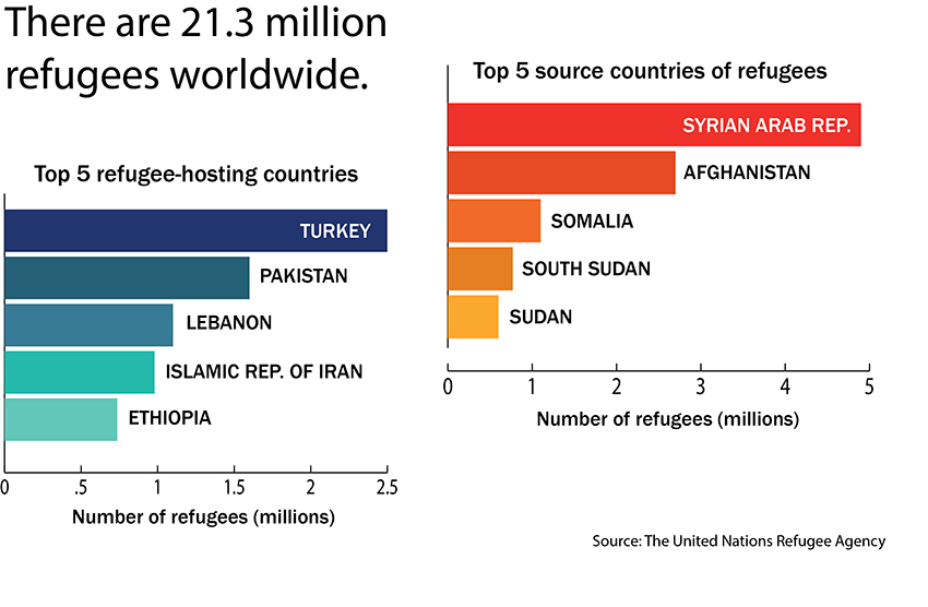 refugee infographic