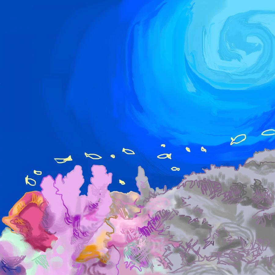 Koral_928_AmberPerry_Coral