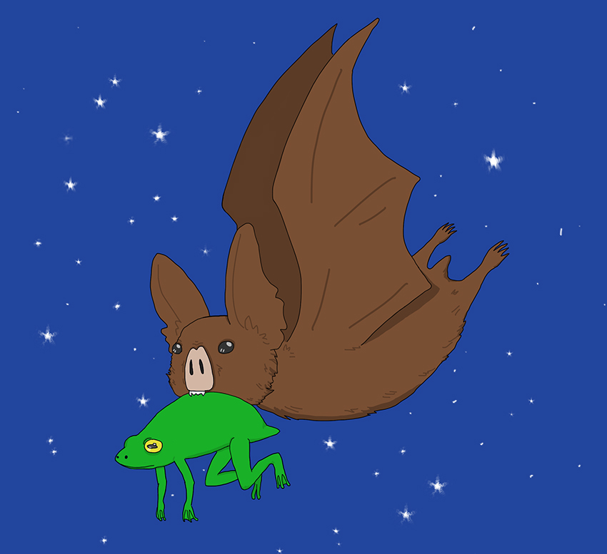 Bats_1027_1026_IvanMoore_bats