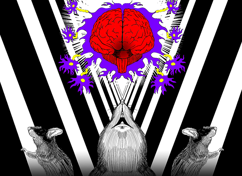 Brain_lab1004_JohnathanDaniels_Brainlab