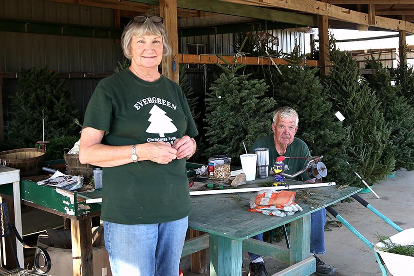 Xmas_Tree12-4-17_Christmas_Tree_Farm_Angela