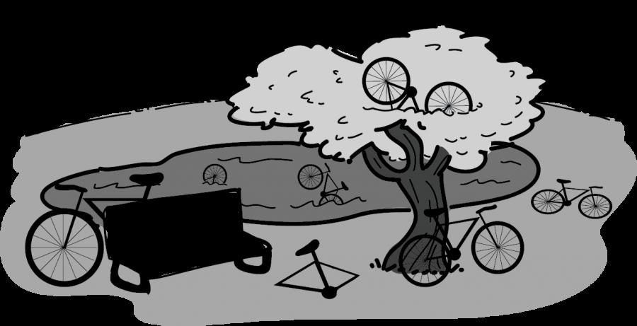 0206_MelWestfall_bikes