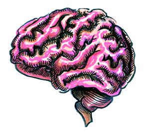 learning_0309_RachelTyler_Brain