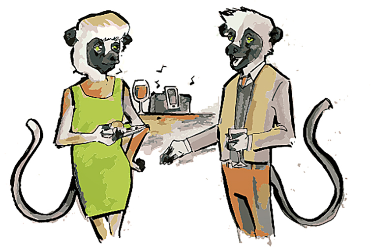 lemur_0328_JebMilling_Lemur copy