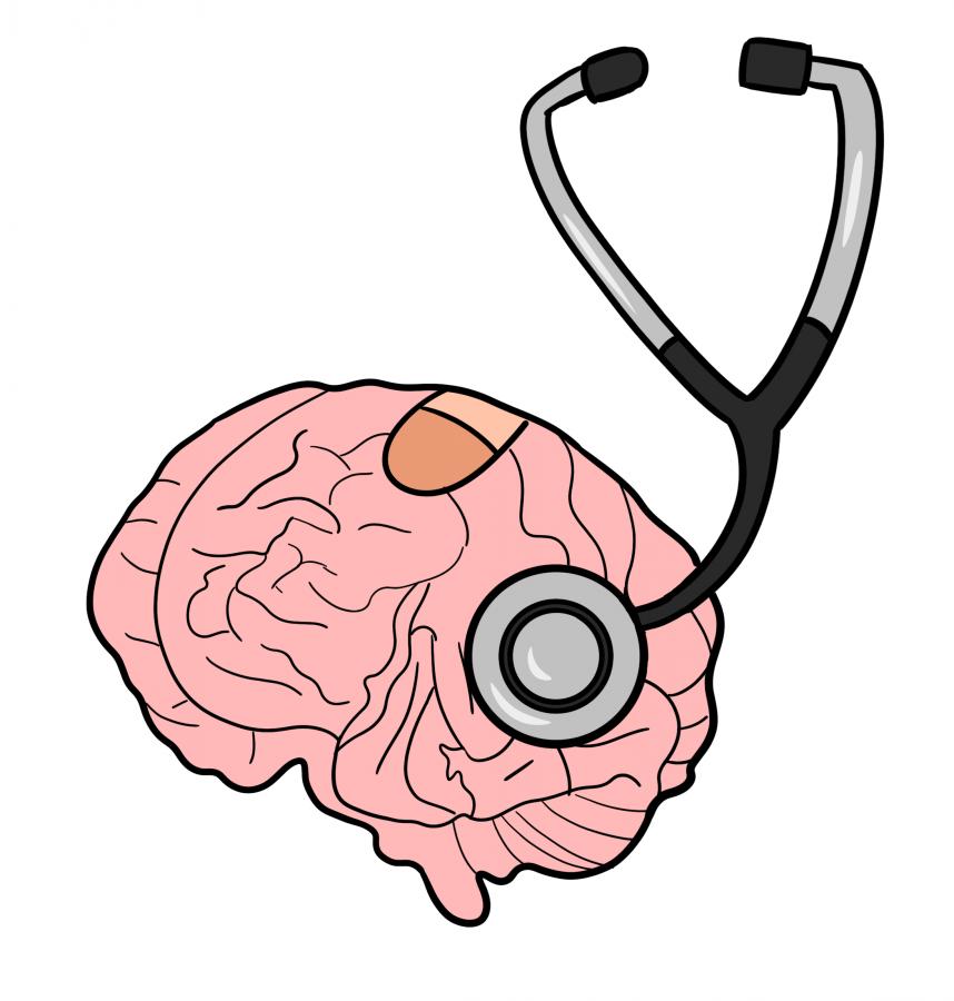 brain illo