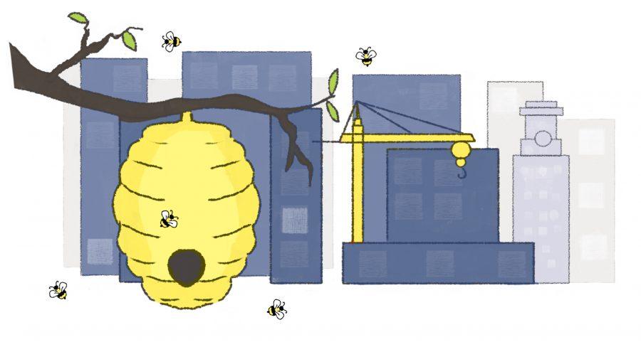 BeeHive2_3