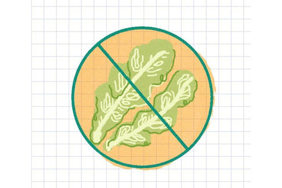 Ban_Food_1204_EllaWilliams_romaine