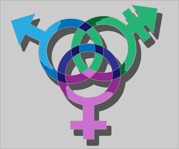 1101_AlexandraVanderhider_transgender_color