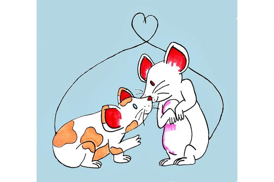 animals_0122_ChanningMiller%28ResearchAnimalsMonogamy%29+copy