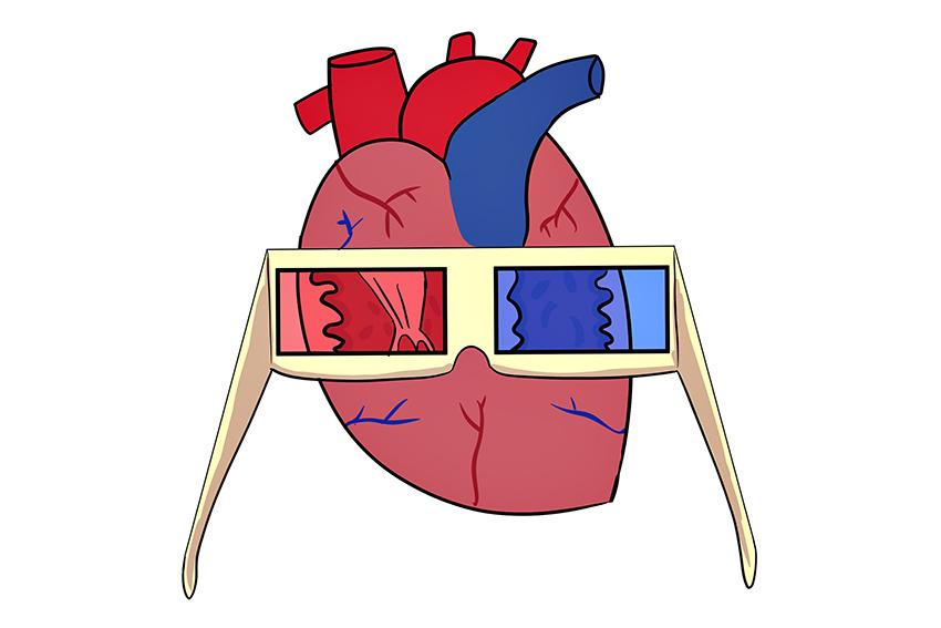 heart_0215_NikolePen%CC%83a_Heart+copy