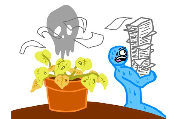 Plants_0501_DanMartinez(Houseplants)