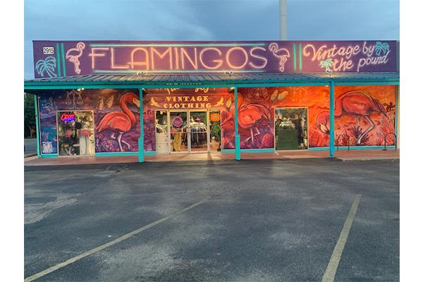 flamingo_Courtesy_of_Ashley_Cooper