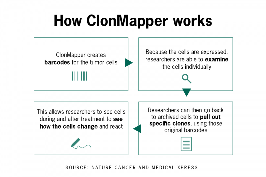 UT researchers create new technology to study tumor evolution