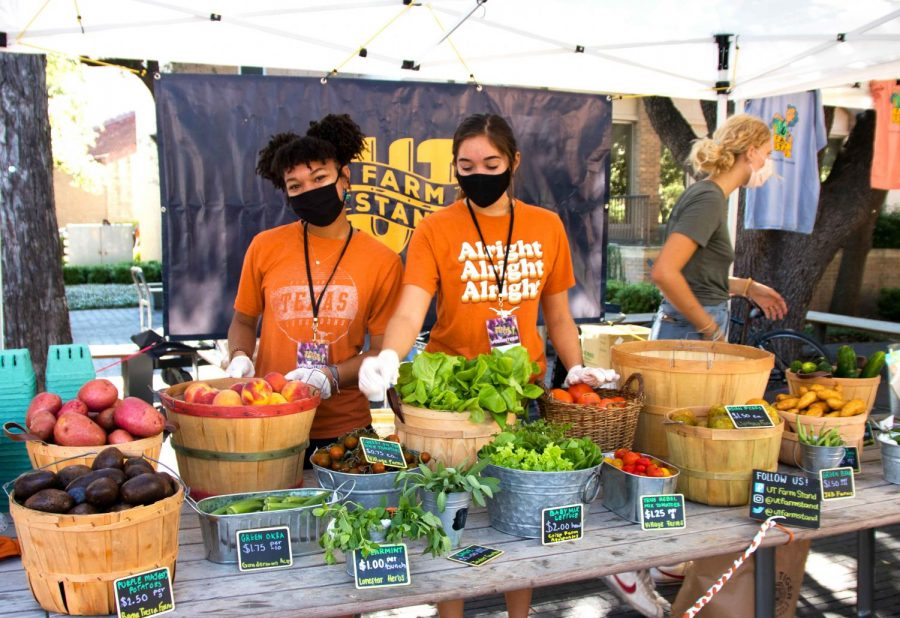 Exploring UT Farm Stand and the importance of sustainability