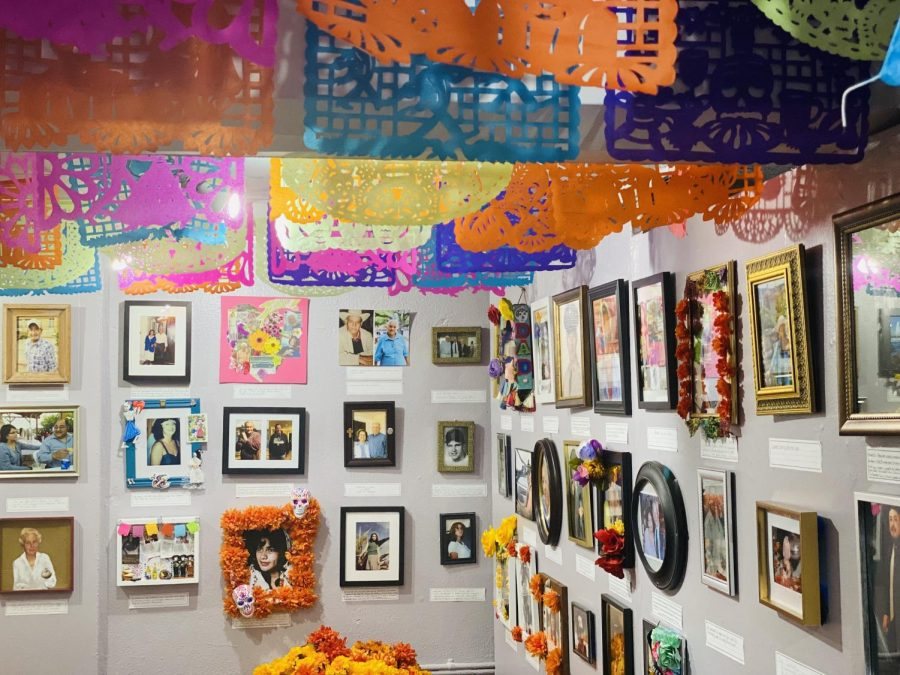 Affordable art exhibitions around Austin to visit this fall